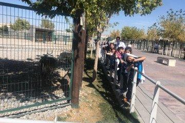 İyi Dersler Okulları Hayvanat Bahçesi Gezisi | Kayseri Konaklar İ...
